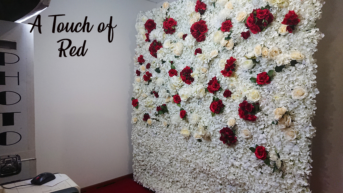 White with Red Flower Wall for Hire