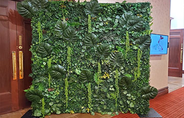 Flower and Greenery Walls Hire
